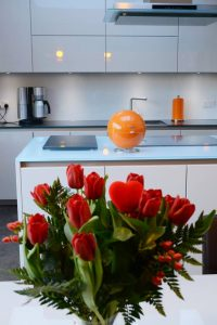 glass-splashbacks-worktops2